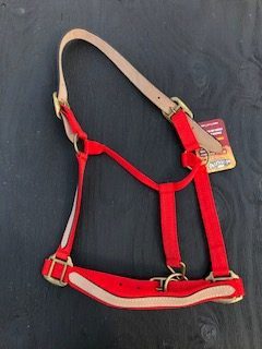 Halter with Leather Overlay