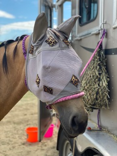 PHT Magnetic Fly Mask