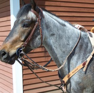 The Tack Stop German Martingale