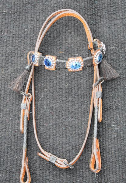 blue headstall